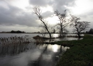 Friesland foto